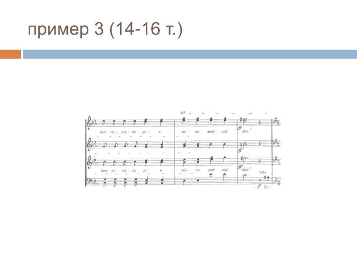 пример 3 (14-16 т.)
