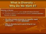 what is diversity why do we want it