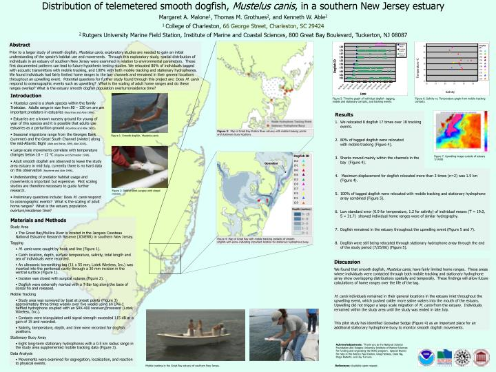 Distribution of telemetered smooth dogfish,