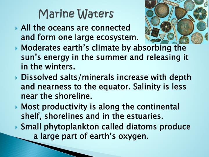 Marine Waters