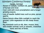northern coniferous forests taiga boreal