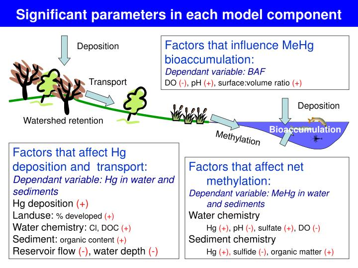 Significant parameters in each model component