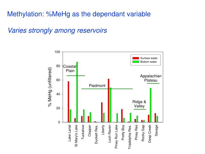 Methylation: %MeHg as the dependant variable
