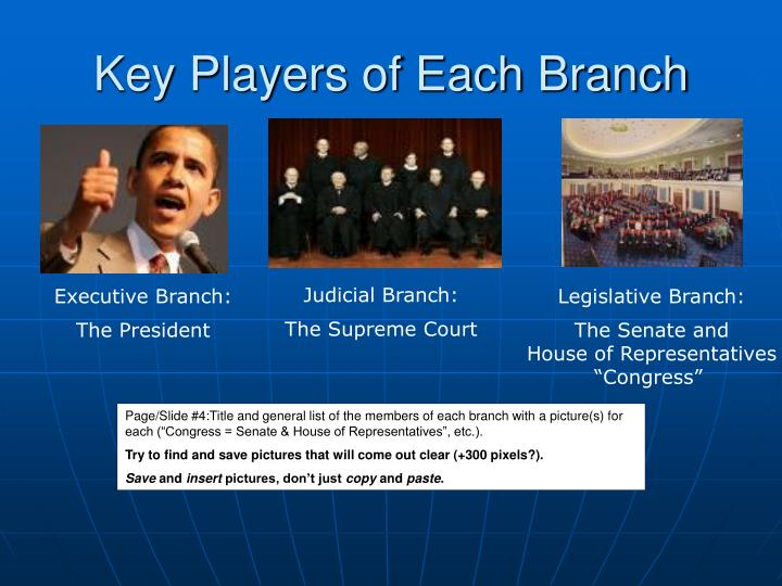 Key Players of Each Branch