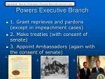 powers executive branch