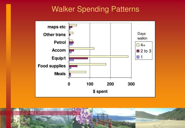 Walker Spending Patterns