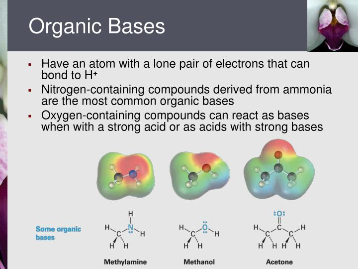 Organic Bases