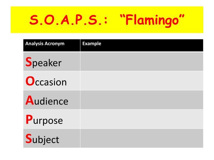 """S.O.A.P.S.:  """"Flamingo"""""""