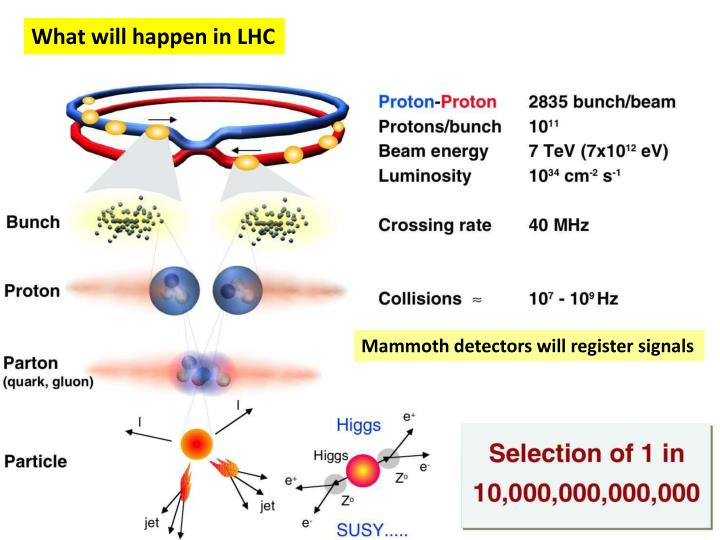 What will happen in LHC