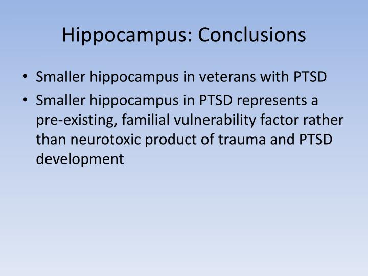 Hippocampus: Conclusions