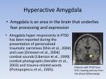 hyperactive amygdala