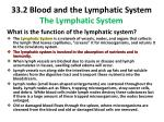 33 2 blood and the lymphatic system the lymphatic system