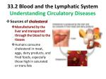 33 2 blood and the lymphatic system understanding circulatory diseases2