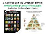 33 2 blood and the lymphatic system understanding circulatory diseases4