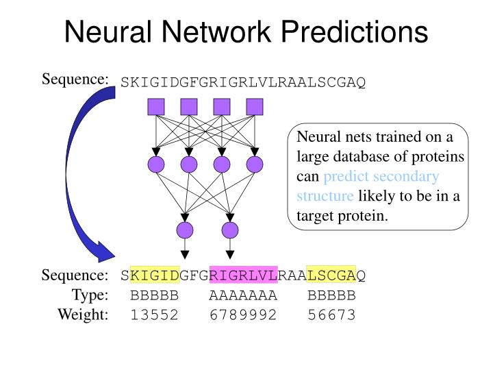 Neural Network Predictions