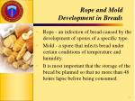 rope and mold development in breads