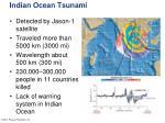 indian ocean tsunami1