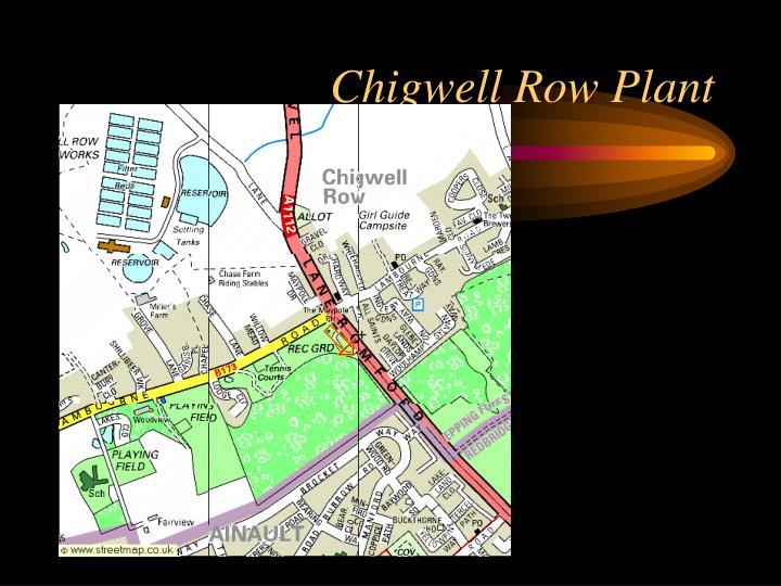 Chigwell Row Plant