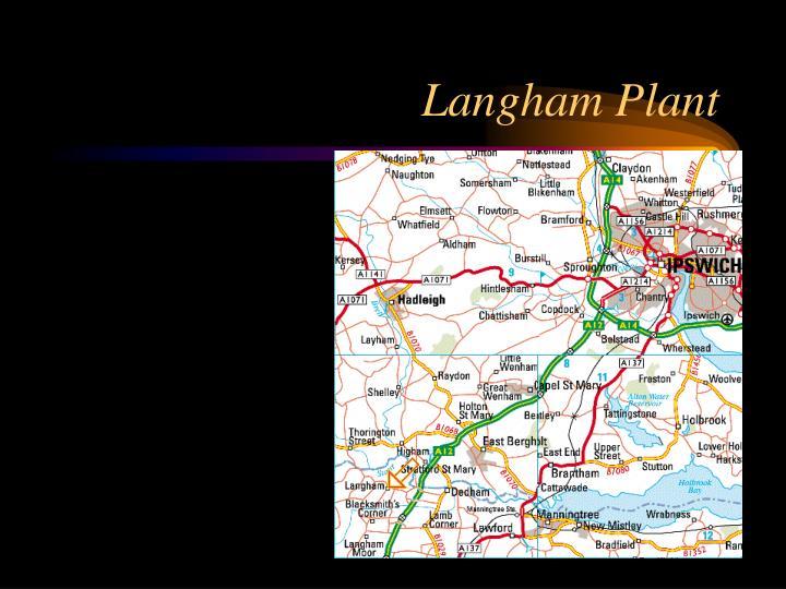 Langham Plant