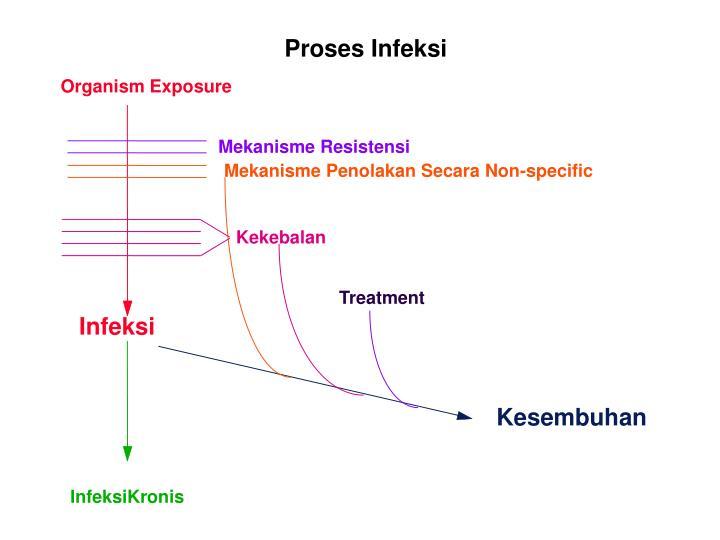 Proses Infeksi