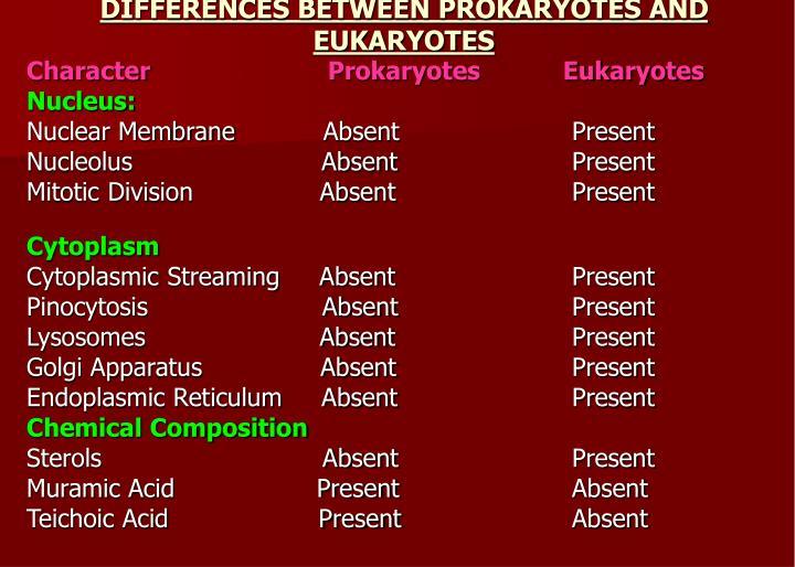 DIFFERENCES BETWEEN PROKARYOTES AND EUKARYOTES