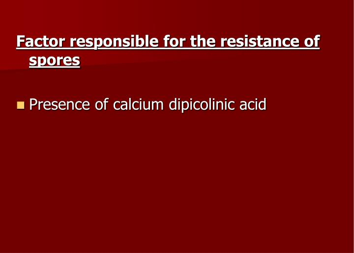 Factor responsible for the resistance of spores