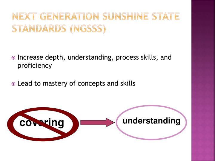 Next Generation Sunshine State Standards (NGSSS)