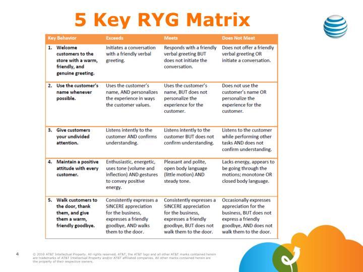 5 Key RYG Matrix
