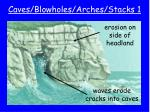 caves blowholes arches stacks 1
