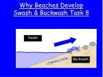 why beaches develop swash backwash task 8