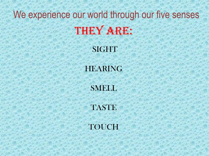 We experience our world through our five senses