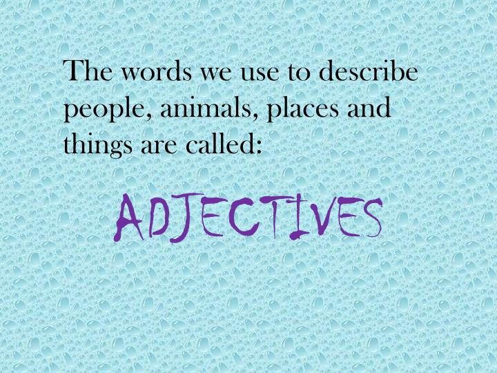 The words we use to describe people, animals, places and things are called: