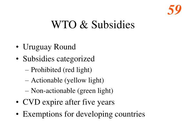WTO & Subsidies