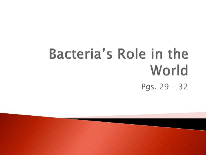 bacteria s role in the world
