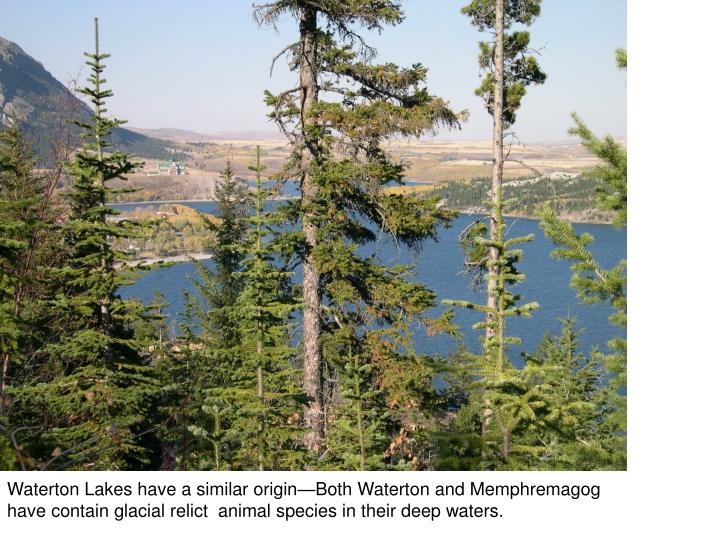 Waterton Lakes have a similar origin—Both Waterton and Memphremagog have contain glacial relict  animal species in their deep waters.