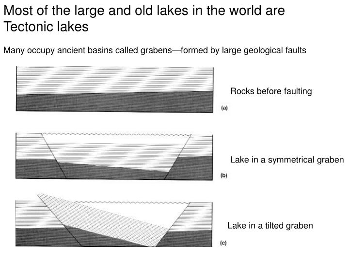 Most of the large and old lakes in the world are Tectonic lakes