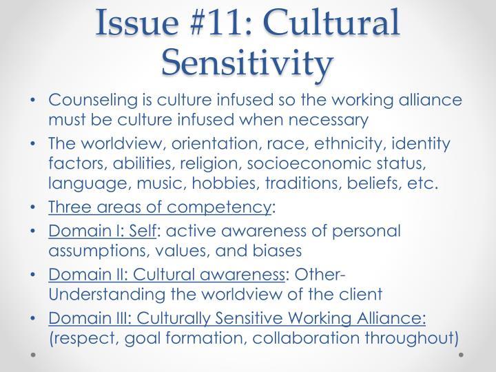 Issue #11: Cultural Sensitivity