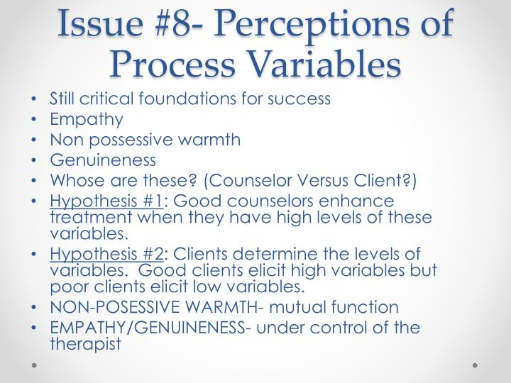 Issue #8- Perceptions of Process