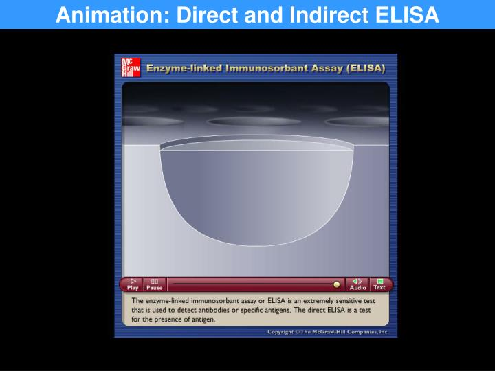 Animation: Direct and Indirect ELISA