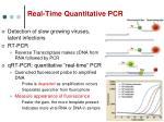 real time quantitative pcr