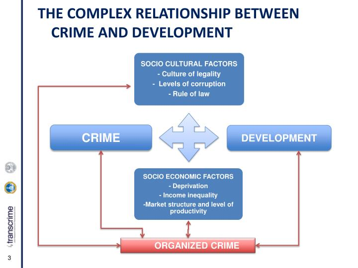 THE COMPLEX RELATIONSHIP BETWEEN CRIME AND DEVELOPMENT