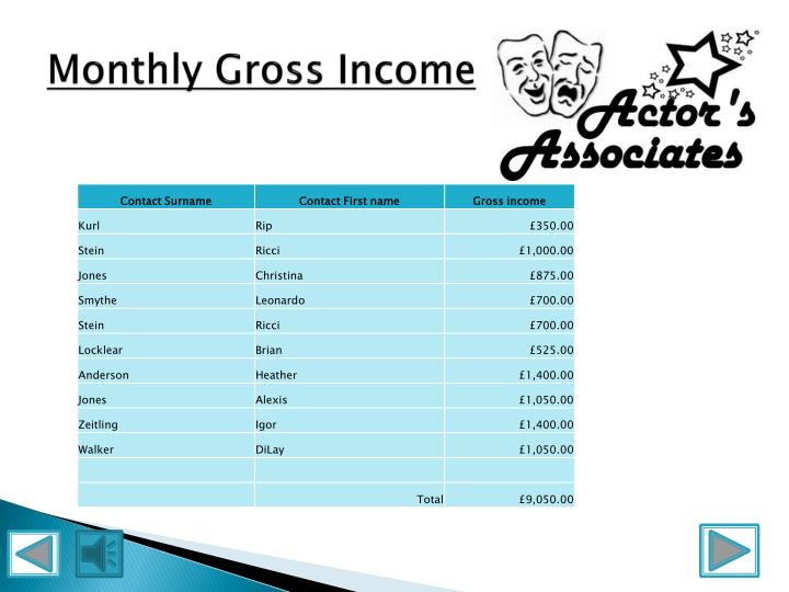 Monthly Gross Income
