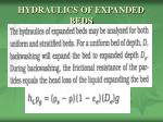 hydraulics of expanded beds