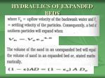 hydraulics of expanded beds2