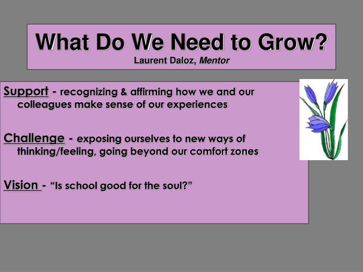 What Do We Need to Grow?