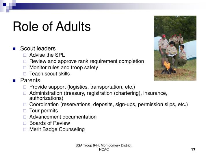 Role of Adults