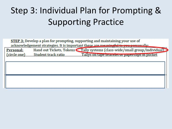 Step 3: Individual Plan for Prompting & Supporting Practice