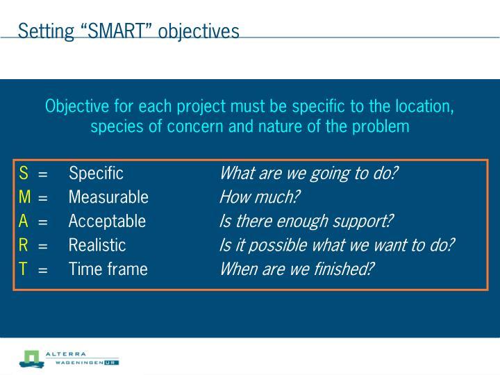 "Setting ""SMART"" objectives"