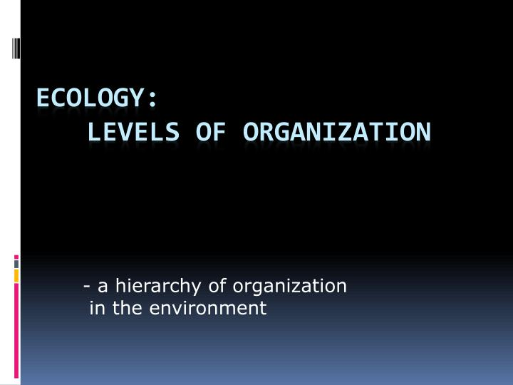 - a hierarchy of organization