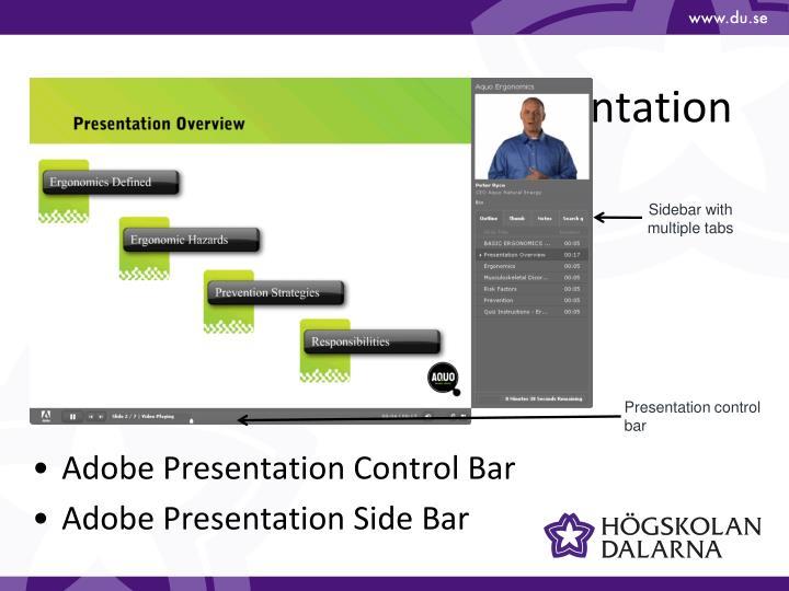 Navigating An Adobe Presentation